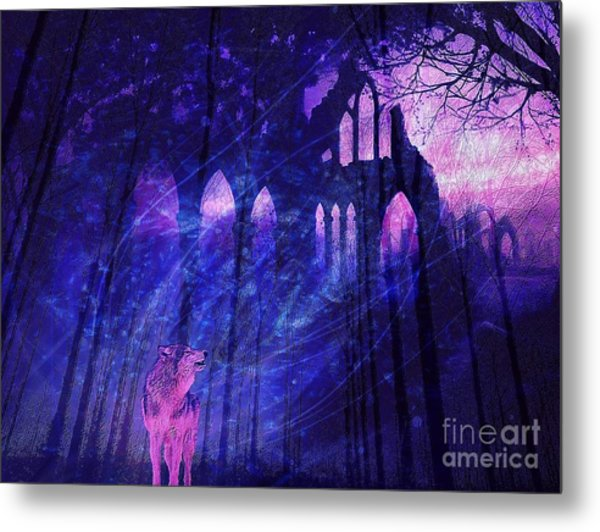 Wolf And Magic Metal Print