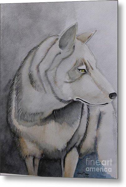 Wolf Metal Print by Grant Mansel-James