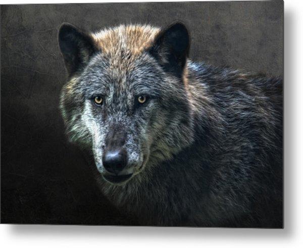 Wolfman Metal Print
