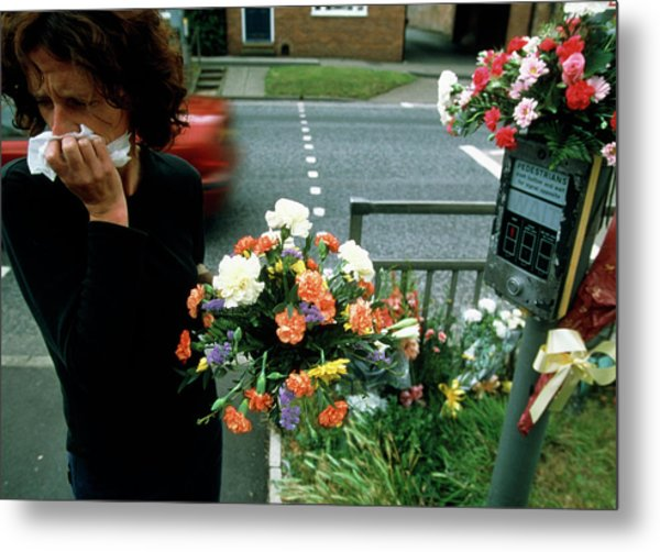 Woman Mourns A Road Kill Metal Print by Jim Varney/science Photo Library