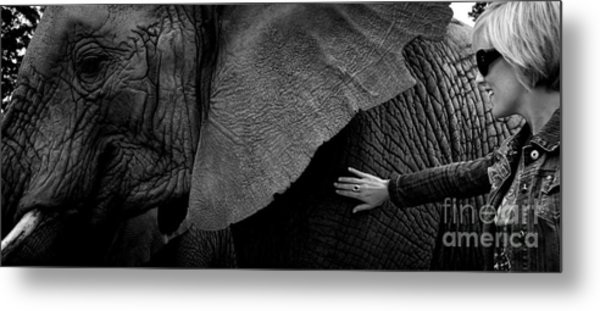 Woman Touching An Elephant Metal Print