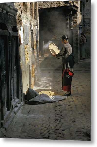 Woman Winnowing Metal Print