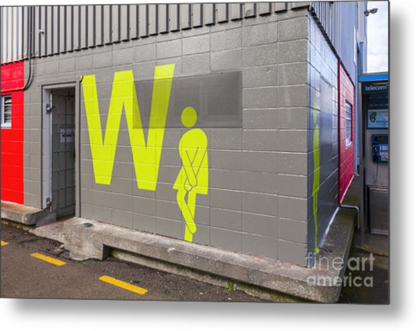 Womens Public Toilet Wellington Nz Metal Print by Colin and Linda McKie