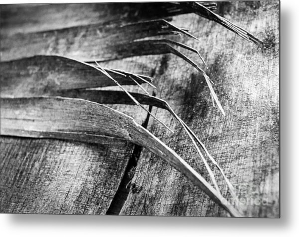 Wood Whispers Metal Print