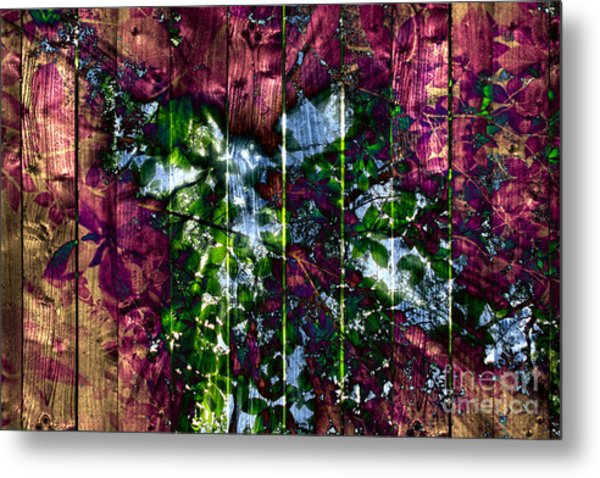 Wooden Planks And Sunlight Streaming Through Leaves II Metal Print