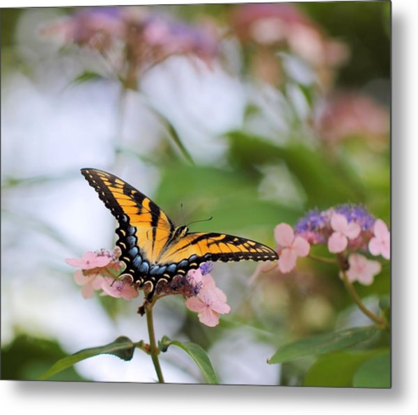 Woodland Butterfly Metal Print