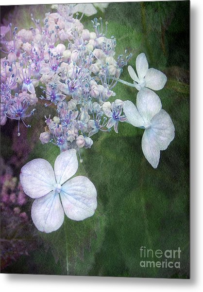 Woodland Hydrangea In Blue Metal Print
