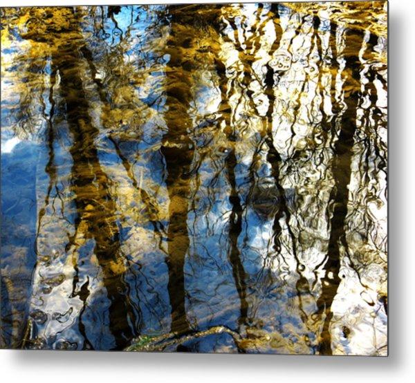 Woodland Reflections Metal Print