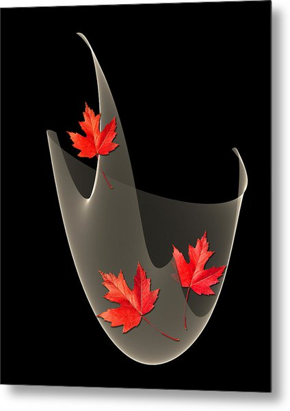 Woven Maple Leaves Metal Print