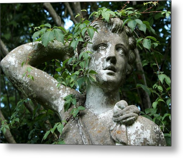 Wreathed In Nature Metal Print