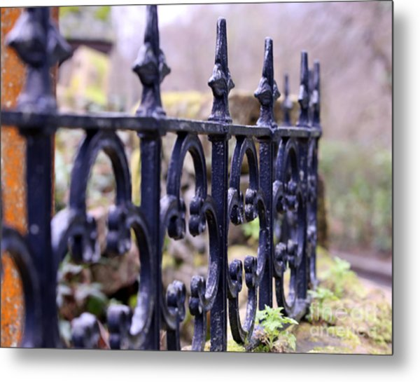 Wrought Iron Fence 1 Metal Print by Kate Purdy