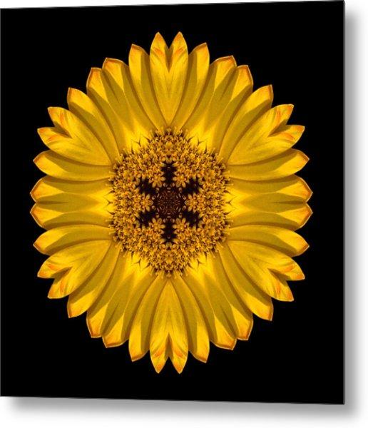 Yellow African Daisy Flower Mandala Metal Print