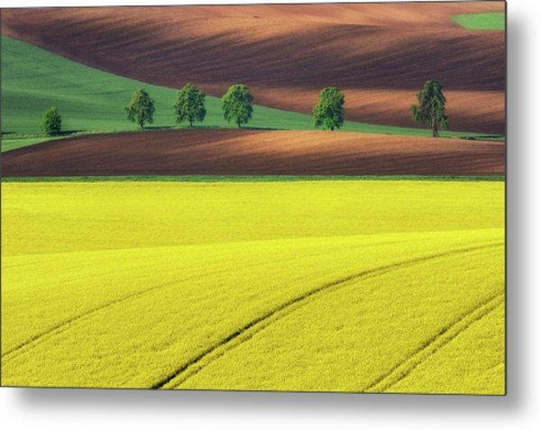 Yellow Metal Print by Ales Komovec