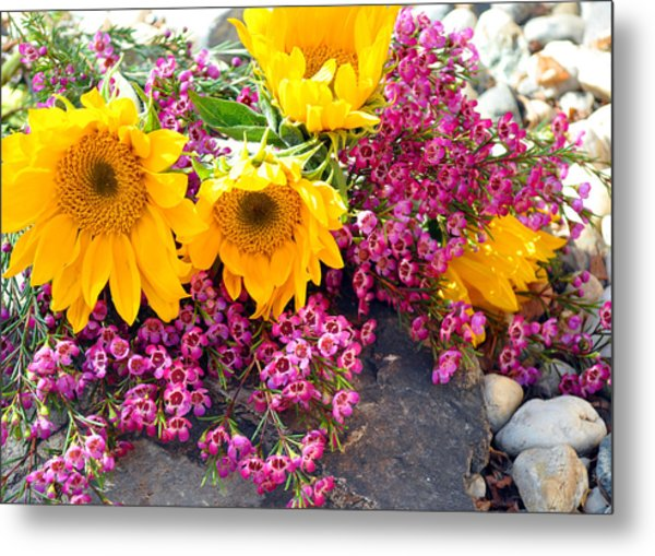 Yellow And Pink Metal Print