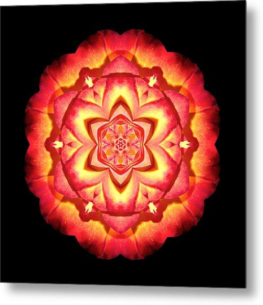 Yellow And Red Rose II Flower Mandalaflower Mandala Metal Print