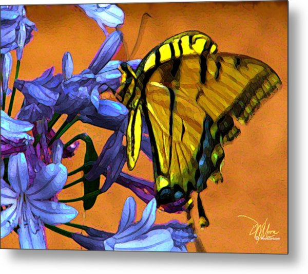 Yellow Butterfly On Agapanthus Metal Print