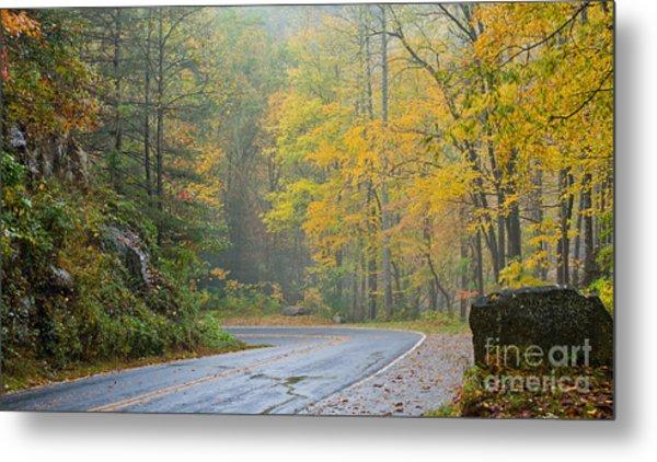 Yellow Fall Roadside Scenic Metal Print