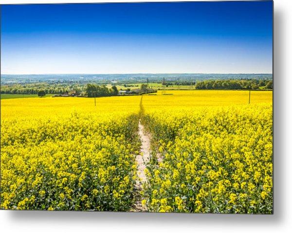 Yellow Fields. Metal Print