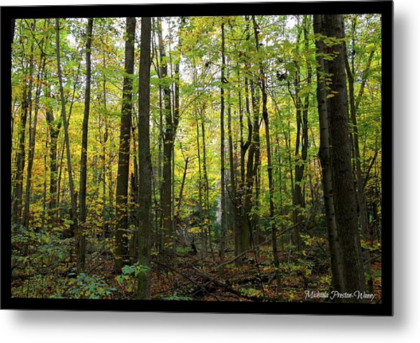 Yellow Forrest Metal Print