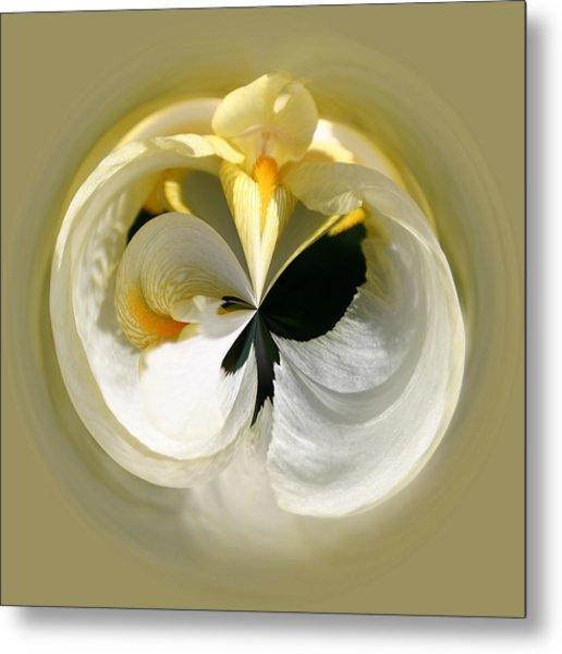 Yellow Iris 101 Metal Print