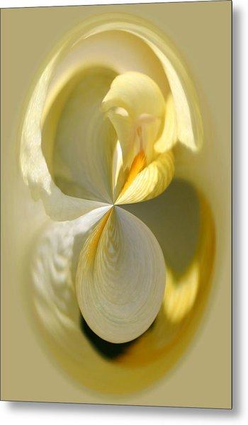 Yellow Iris Series 105 Metal Print