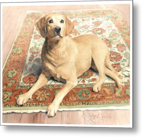 Yellow Lab On A Rug Watercolor Portrait Metal Print by Mike Theuer