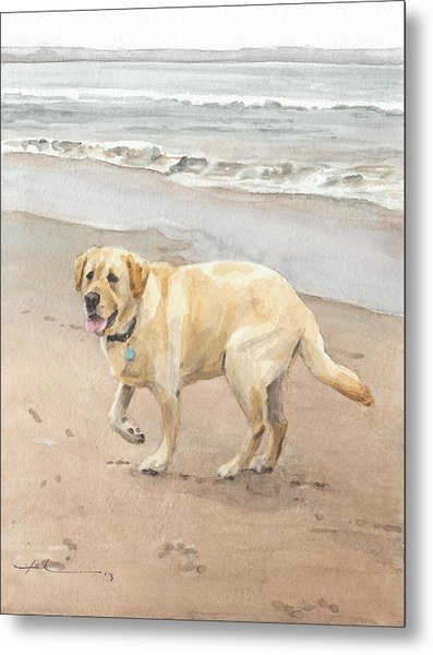 Yellow Lab On Beach Watercolor Portrait Metal Print by Mike Theuer