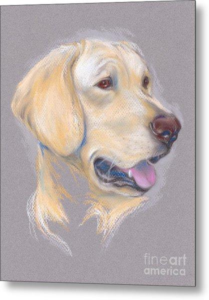 Yellow Labrador Retriever Portrait Metal Print
