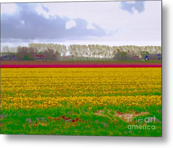 Metal Print featuring the photograph Yellow Meadow by Luc Van de Steeg