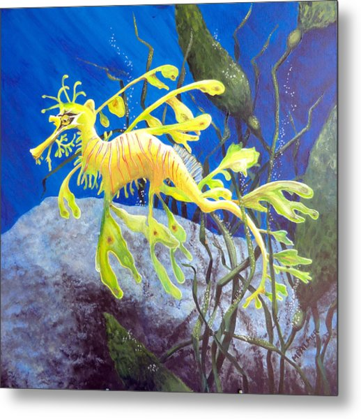 Yellow Seadragon Metal Print