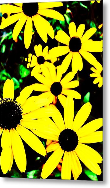 Yellow Stroll Metal Print by Paul Tully