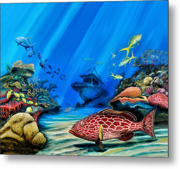 Metal Print featuring the painting Yellowfin Grouper Wreck by Steve Ozment