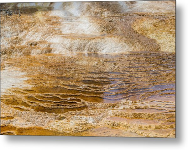 Yellowstone Gold Metal Print