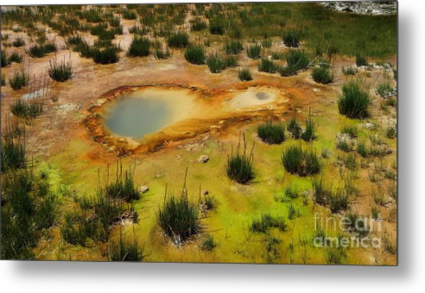 Yellowstone Hot Pool Metal Print