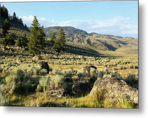 Yellowstone Scenery Metal Print by Sophie Vigneault