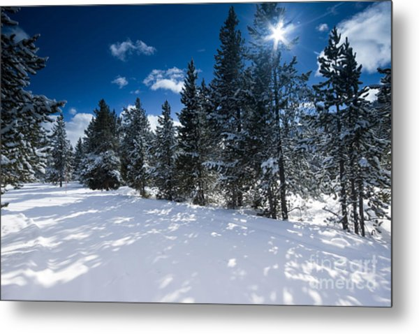 Yellowstone Sunshine Metal Print