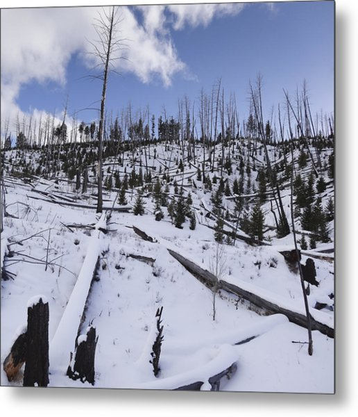 Yellowstone Winter Metal Print by David Yack