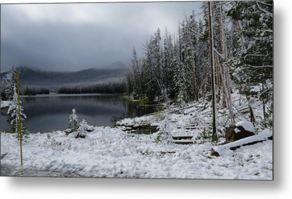 Yellowstone Winter Metal Print by Diane Mitchell