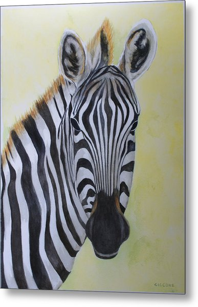 Yipes Stripes Metal Print