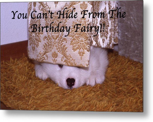 You Can't Hide Birthday Card Metal Print