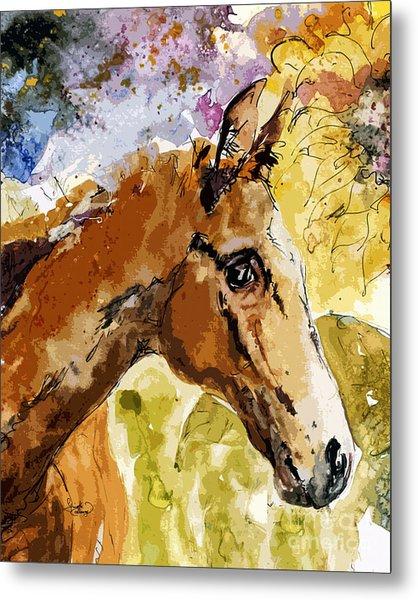 Young Life Horse Portrait Metal Print