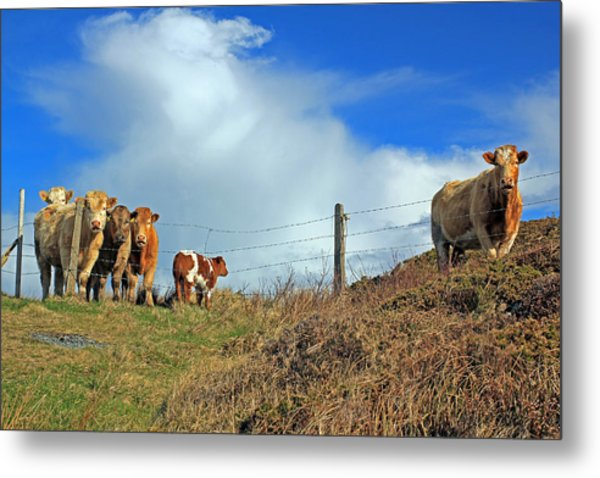 Youth In Defiance Metal Print