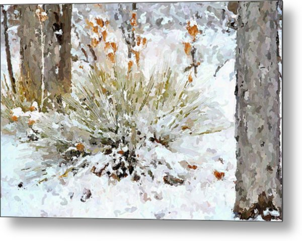 Yucca In The Snow Metal Print by John Cullum