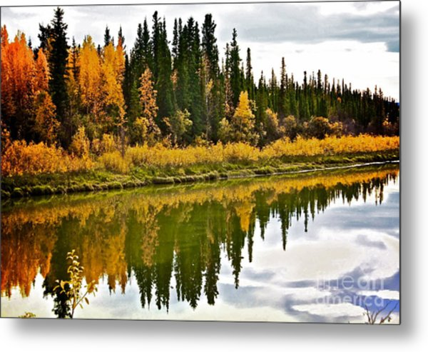 Yukon Autumn Metal Print