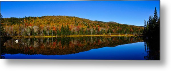 Zealand Pond Reflections Metal Print by Rockybranch Dreams