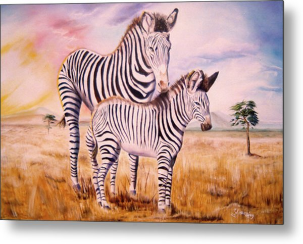 Metal Print featuring the painting Zebra And Foal by Thomas J Herring