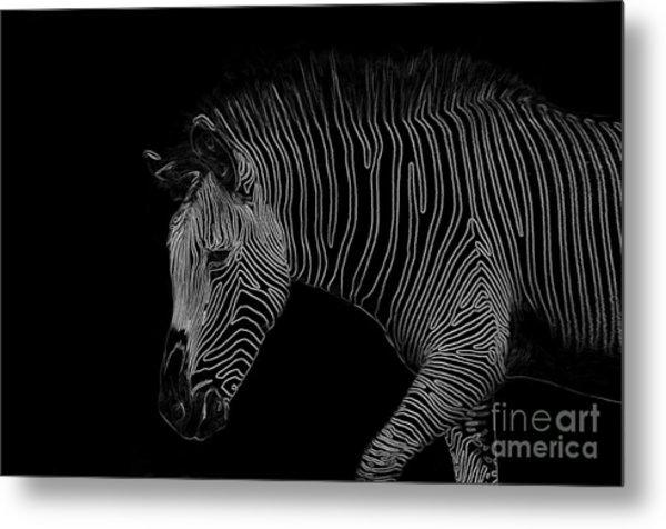 Zebra Art Metal Print