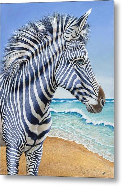Zebra By The Sea Metal Print