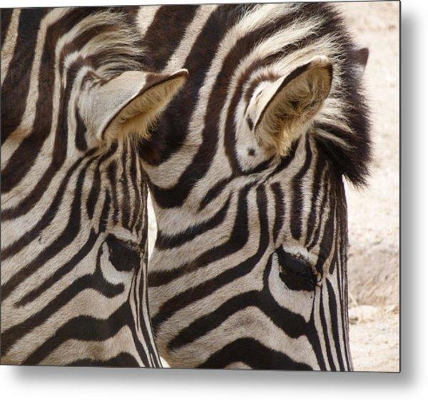 Zebra Double Metal Print
