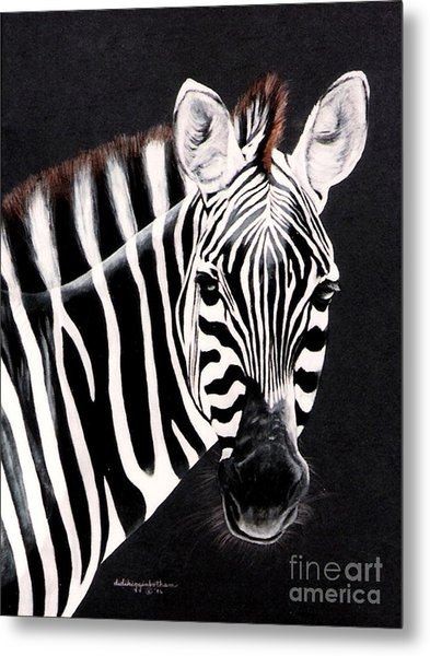 Zebra Facing Right Metal Print
